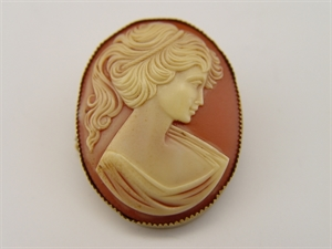 Picture of Vintage Cameo Pin with a Gold Color Metal Saw Tooth Banded Edge